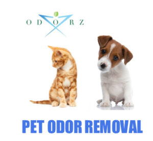 Pet Odor Removal Las Vegas